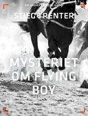 Mysteriet om Flying Boy