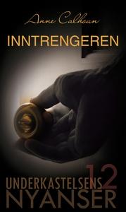 Inntrengeren (ebok) av Anne Calhoun