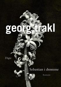 Sebastian i drømme (e-bog) af Georg T