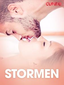 Stormen  - erotiske noveller (ebok) av Cupido
