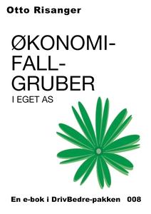 Økonomifallgruber i eget AS (ebok) av Otto Ri