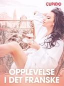 Opplevelse i det franske – erotiske noveller