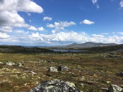 Folket på Skovbo (ebok) av Helge  Midtdal