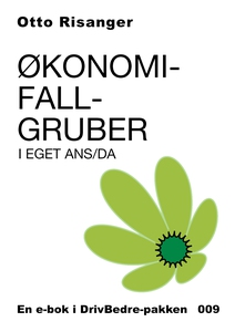 Økonomifallgruber i eget ANS/DA (ebok) av Ott