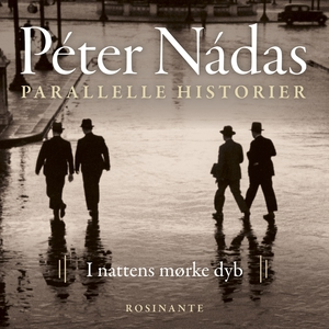Parallelle historier 2 (lydbog) af Pé