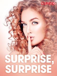 Surprise, surprise – erotiske noveller (ebok)