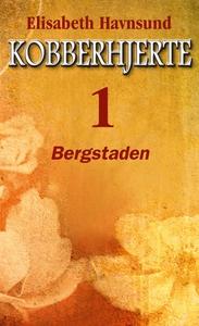 Bergstaden (ebok) av Elisabeth Havnsund