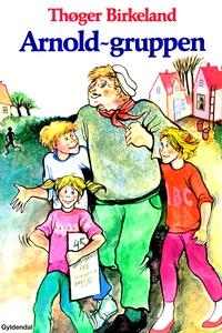 Arnold-gruppen (e-bog) af Thøger Birk