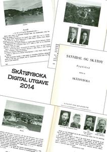 Sannidal og Skåtøy (ebok) av En  Kommite, Per