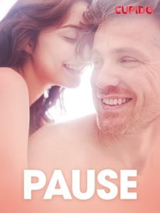 Pause - erotiske noveller (ebok) av Cupido .