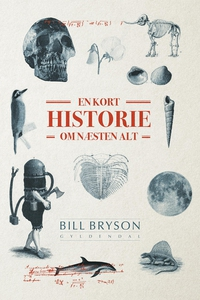 En kort historie om næsten alt (e-bog