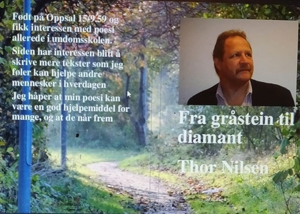 Fra gråstein til diamant Thor Nilsen (ebok) a