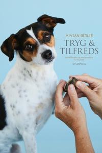 Tryg og tilfreds (e-bog) af Vivian Bi
