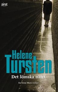 Det lömska nätet (e-bok) av Helene Tursten