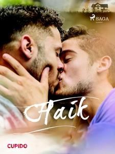 Haik (ebok) av Cupido noveller