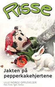 Jakten på pepperkakehjertene (ebok) av Hanne