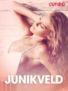 Junikveld - erotiske noveller (ebok) av Cupid