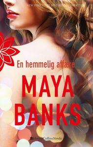 En hemmelig affære (e-bog) af Maya Ba