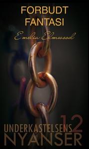 Forbudt fantasi (ebok) av Emelia Elmwood