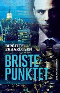 Bristepunktet (e-bog) af Birgitte Erhardtsen