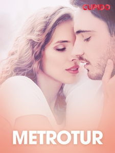 Metrotur – erotiske noveller (ebok) av Cupido
