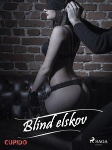 Blind elskov (ebok) av Cupido noveller