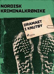 Dramaet i Knutby (ebok) av Diverse forfattere