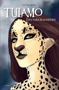 Lys i virkeligheden (e-bog) af Steffe