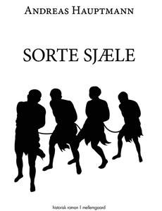 Sorte sjæle (e-bog) af Andreas Hauptm