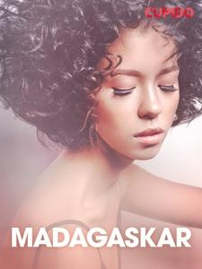 Madagaskar – erotiske noveller (NO) (ebok) av