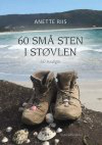 60 SMÅ STEN I STØVLEN (e-bog) af Anet