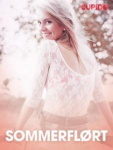 Sommerflørt – erotiske noveller (ebok) av Cup