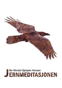 Jernmeditasjonen (ebok) av Bo-Nicolai Gjerpen