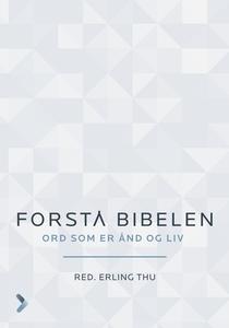 Forstå Bibelen (ebok) av Erling Thu