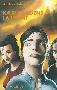 Kærlighedens labyrint (e-bog) af Ande