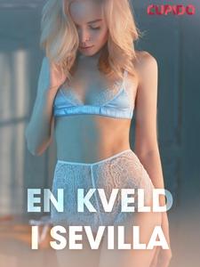 En kveld i Sevilla - erotiske noveller (ebok)