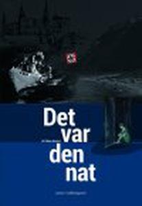 DET VAR DEN NAT (e-bog) af Rikke Barf