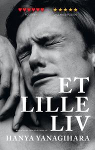 Et lille liv (e-bog) af Hanya Yanagihara