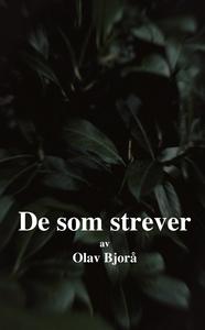 De som strever (ebok) av Olav Bjorå
