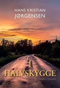 I halvskygge (e-bog) af Hans Kristian