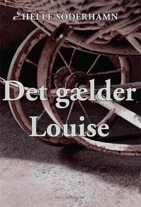 Det gælder Louise (e-bog) af Helle Sö