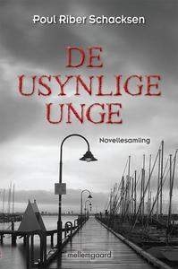 De usynlige unge (e-bog) af Poul Ribe