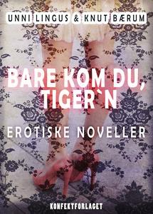 Bare kom du, Tiger´n (ebok) av Knut Bærum, Un