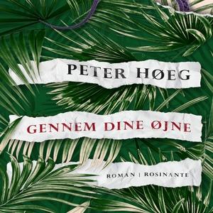 Gennem dine øjne (lydbog) af Peter Hø