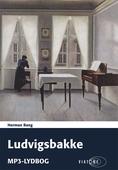 Ludvigsbakke