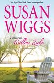 Tilbake til Willow Lake
