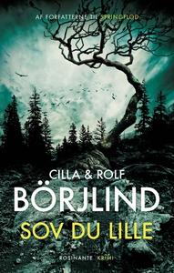 Sov du lille (e-bog) af Cilla og Rolf Börjlind