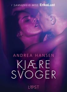 Kjære svoger - en erotisk novelle (ebok) av A