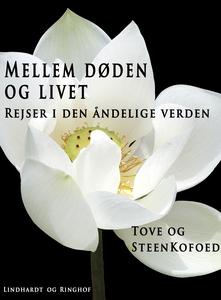 Mellem døden og livet (e-bog) af Stee
