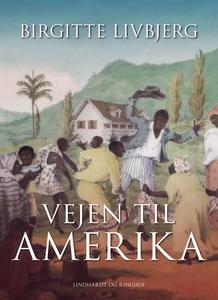 Vejen til Amerika (e-bog) af Birgitte